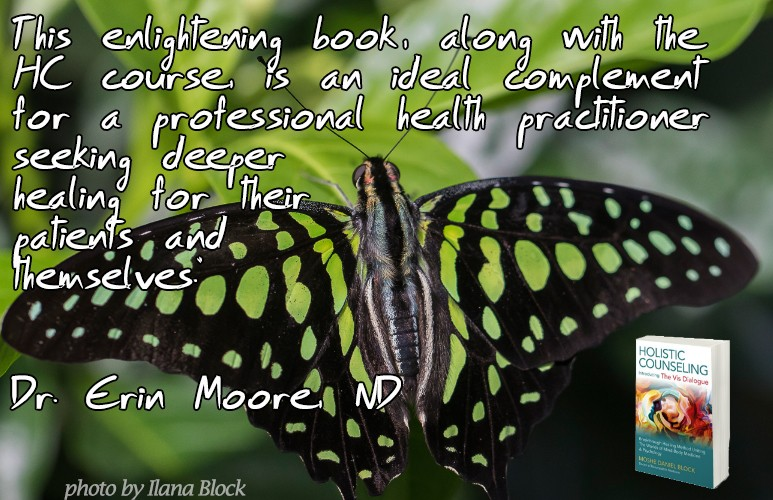 About Holistic counseling the course and book2