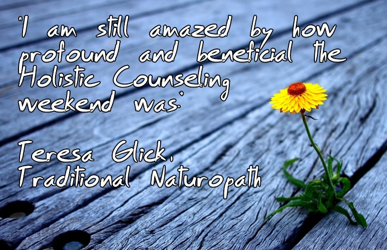 Holistic counseling the course3