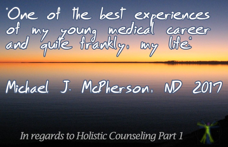 About Holistic counseling the course